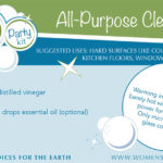 recipe card for non-toxic cleaner