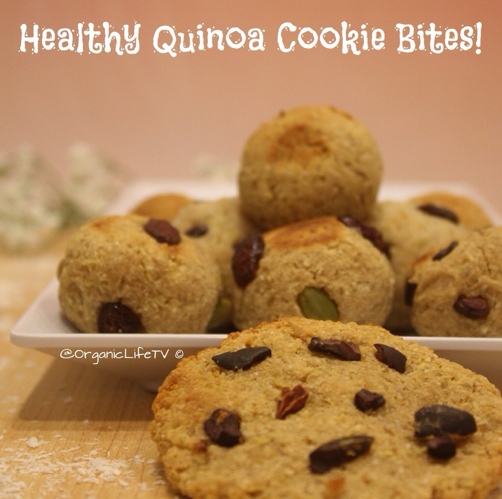QuinoaCookies - Women's Voices for the Earth