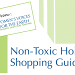 non-toxic gift guide for her
