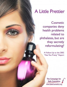 Report on Toxic chemicals in cosmetics